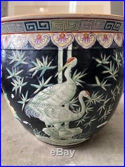Chinese Large Famille Noire Porcelain Fish Bowl Planter Pot Flower Vase 20