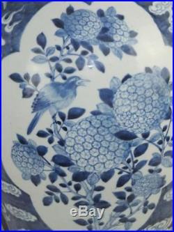 Good Large 25 19th C Chinese Porcelain Blue & White Birds Dragons Vase & Cover