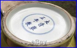 LARGE 17.25 44cm antique YONGZHENG CHINESE ROULEAU FAMILLE JAUNE VERTE VASE