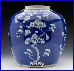Large Antique Chinese Kangxi Mark Hawthorn Jar 19th C