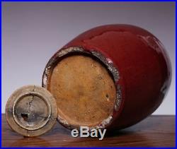 Large Unique Chinese Antique Old Red Glaze Vase Handwork Porcelain Bottle JZ219